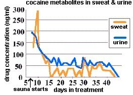 cocaine metabolites in sweat & urine